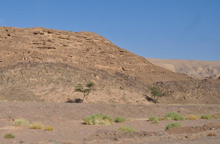 Sinaï-wadi