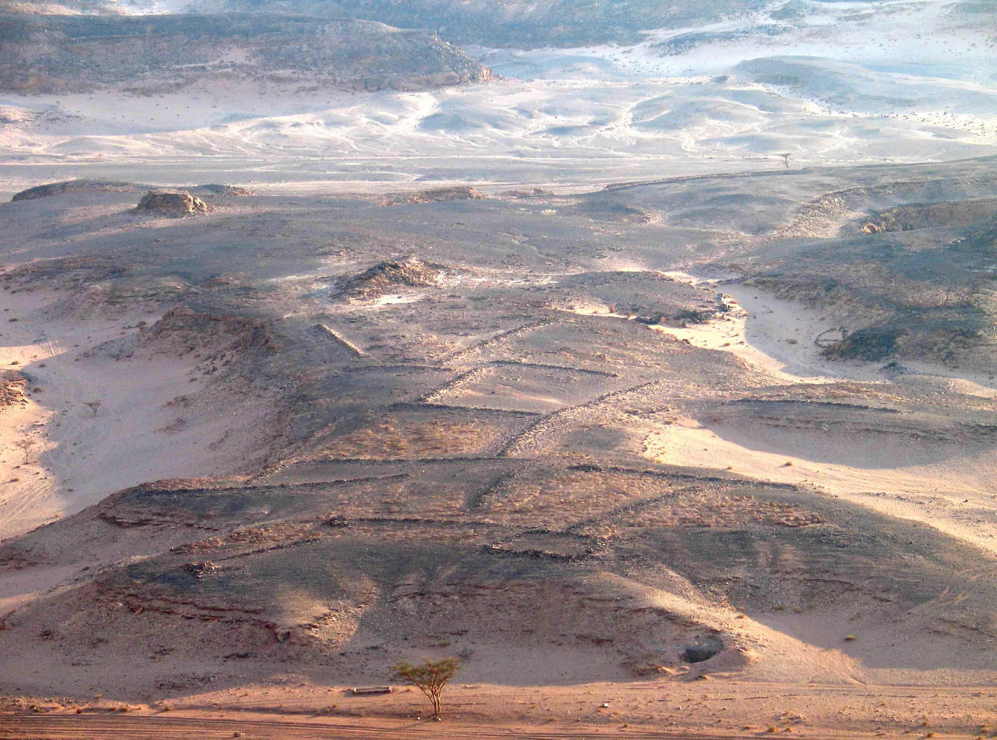 fig. Sinai 2-léger
